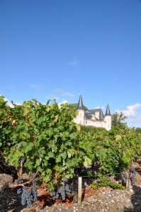 Cabernet Sauvignon at Pichon Longueville, 26 September