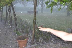 Bauduc Hail - 060