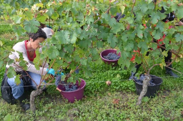 Cheval Blanc Oct 9 - 56