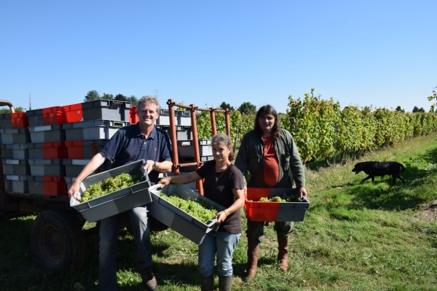 With the brilliant Nelly and Daniel 'Ramone'. 2014 is our 16th harvest together.