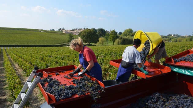 Lafite 24 Sept 2014 - 117 - Version 3